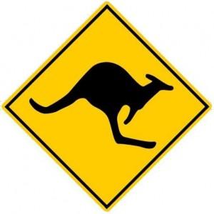 kangourou_bde